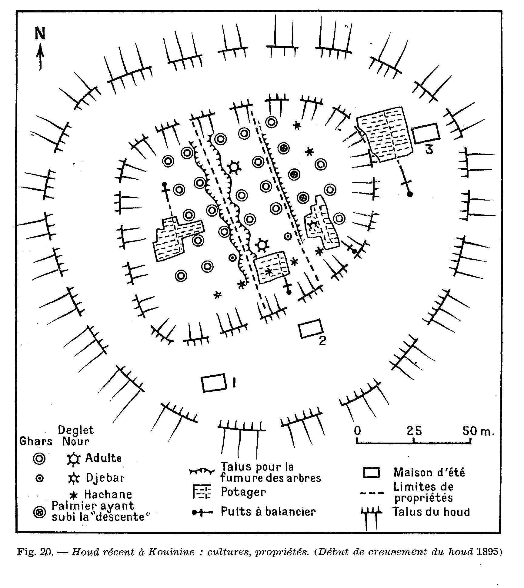 plan détaillé d'un ghout à Kouinine en 1953